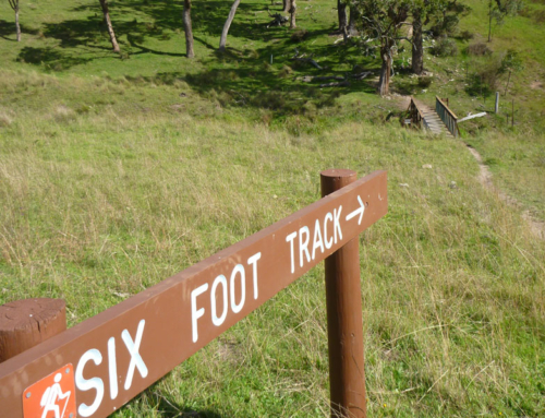Six Foot Track Itineraries